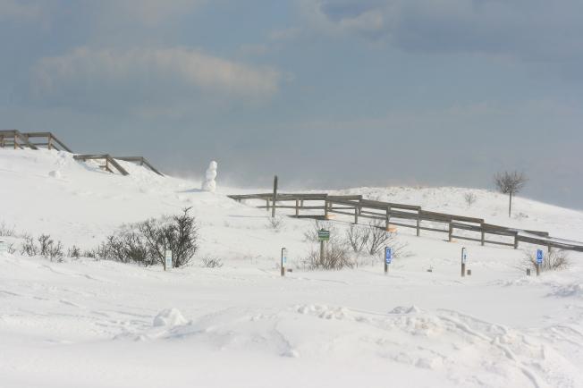 A Snowy Winter in Massachusetts